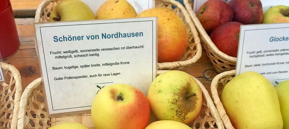 Apfelfest  in Düsseldorf © Sevil Yildirim