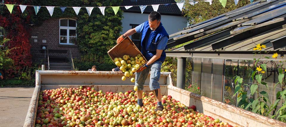 Apfelsammelaktion © Hans-Martin Kochanek